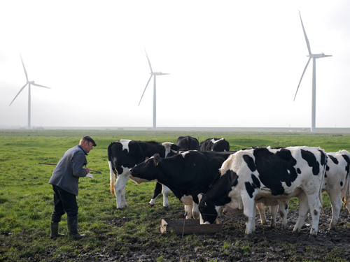 http://mascontext.com/wp-content/uploads/2010/03/05_farming_the_air_cover1.jpg